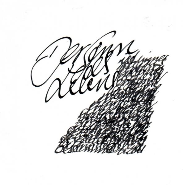 scriptogram_0119