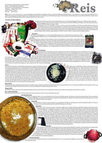 2006_fognin_thg_plkt_reis50x70_s1_1680
