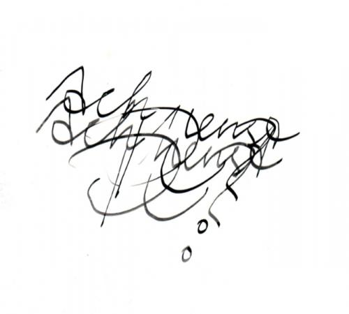 scriptogram_0217